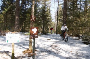 Grouse Trail in Winter